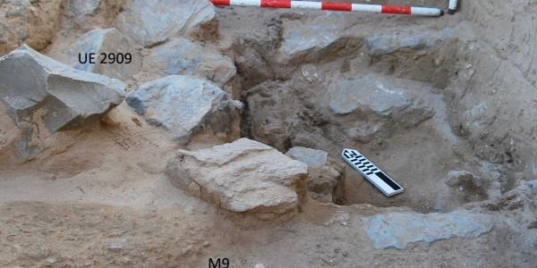 Restos arqueozoológicos de atunes (Baelo Claudia, 2004)